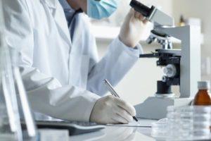 Servicios - Estudio microbiológico